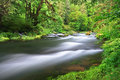 Drift Creek Royalty Free Stock Photo