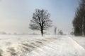 Drifting snow across the road. Ontario, Canada Royalty Free Stock Photo