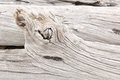 Driftwood detail of weathered found on the chilean coast in patagonia Stock Image