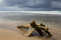 Driftwood log at beach and storm clouds Royalty Free Stock Photo