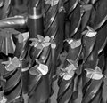 Drill Bits Royalty Free Stock Photo