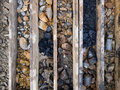 Drilled core samples Royalty Free Stock Photos