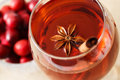 Drink with star anise and a cinnamon stick herbal cranberries Royalty Free Stock Photography