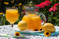Drinks In The Garden Royalty Free Stock Photo