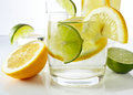 Drinks with lemon and lime shot on reflective white background Royalty Free Stock Photos