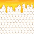 Dripping honey seamlessly repeatable. Honey splash dripping sweet drops from bee honeycomb poster for beekeeping honey Royalty Free Stock Photo