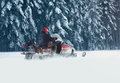 Driver man riding on a snowmobile through snow in a snowy forest trees Royalty Free Stock Photo