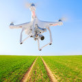 Drone over green wheat. Royalty Free Stock Photo