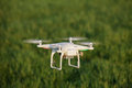 Drone stock photo it is a shoot of a flying over the grass Royalty Free Stock Photo