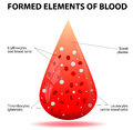A drop of blood formed elements cells platelets erythrocytes leukocytes thrombocytes Royalty Free Stock Photo