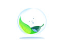 Drop water leaf inside transparency sphere Royalty Free Stock Photos