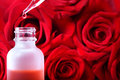 Dropper bottle with red roses rose essence over beautiful Royalty Free Stock Photo