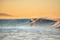Dropping in on Autumn morning surf session. Royalty Free Stock Photo