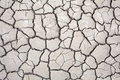 Drought Conditions Royalty Free Stock Image