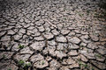 Drought Cracked Ground Royalty Free Stock Photo