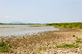 Drought - dry cracked ground and drying out lake. The place is the Hungarian rural in the hot summer. Royalty Free Stock Photo
