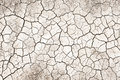Drought dry and cracked soil in summer that can be used as background Royalty Free Stock Photo
