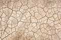Drought dry and cracked soil in summer that can be used as background Stock Images