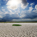 Drought earth and sunny sky Royalty Free Stock Photo