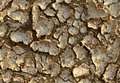 Drought environment background with dried earth cracked from lack of water caused by extreme heat and erosion resulting in farming Stock Photography