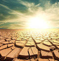 Drought land in the desert Royalty Free Stock Image