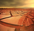 Drought land in namib desert namibia Stock Images