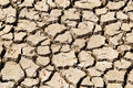Drought Relief Royalty Free Stock Photo