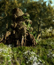 The Druids Stump Stock Photography