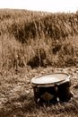 Drum in the field Stock Images