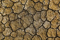 Dry arid soil with cracks Stock Photos