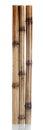 Dry bamboo sticks Royalty Free Stock Photo
