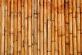 Dry bamboo sticks Royalty Free Stock Photo