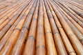 Dry bamboo sticks Royalty Free Stock Photos