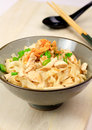 Dry chicken noodle chinese Stock Images
