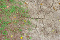 Dry and crack soil with green grass Royalty Free Stock Photo