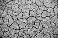 Dry cracked earth background Royalty Free Stock Photo