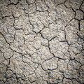 Dry Cracked Earth Background, ...