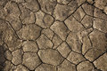 Dry Cracked Earth - Namibia Royalty Free Stock Image