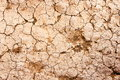 Dry cracked earth texture. Royalty Free Stock Photo