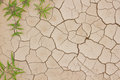Dry cracked ground Stock Images