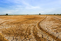 Dry and cracked ground. Royalty Free Stock Photo