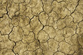 Dry cracked land Royalty Free Stock Image