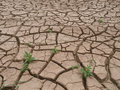 Dry cracked land close up on Royalty Free Stock Image