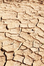 Dry cracked mud in dried up waterhole Royalty Free Stock Photo