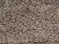 Dry cracked riverbed Royalty Free Stock Image