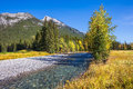 Dry creek in Canadian Rockies Royalty Free Stock Photo