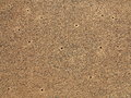 Dry dirt ground texture closeup of the structure of a with ant holes Royalty Free Stock Photos