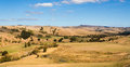 Dry farmland drought of in new zealnd left the land very looking Stock Photo