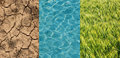 Dry field, green wheat and water Royalty Free Stock Photo