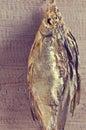 Dry fish bream Royalty Free Stock Photo